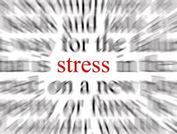 Stress and Stress Culture at Bancroft