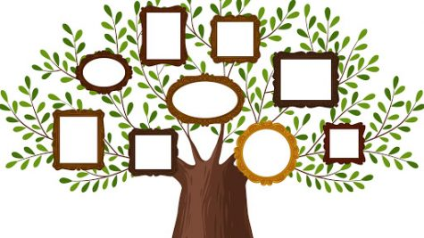 KDPBGT Genealogical family tree with picture frames. Pedigree, genealogy, lineage, dynasty concept. Vector illustration