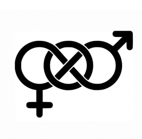Pronouns and Gender Neutral Terms (And Why They