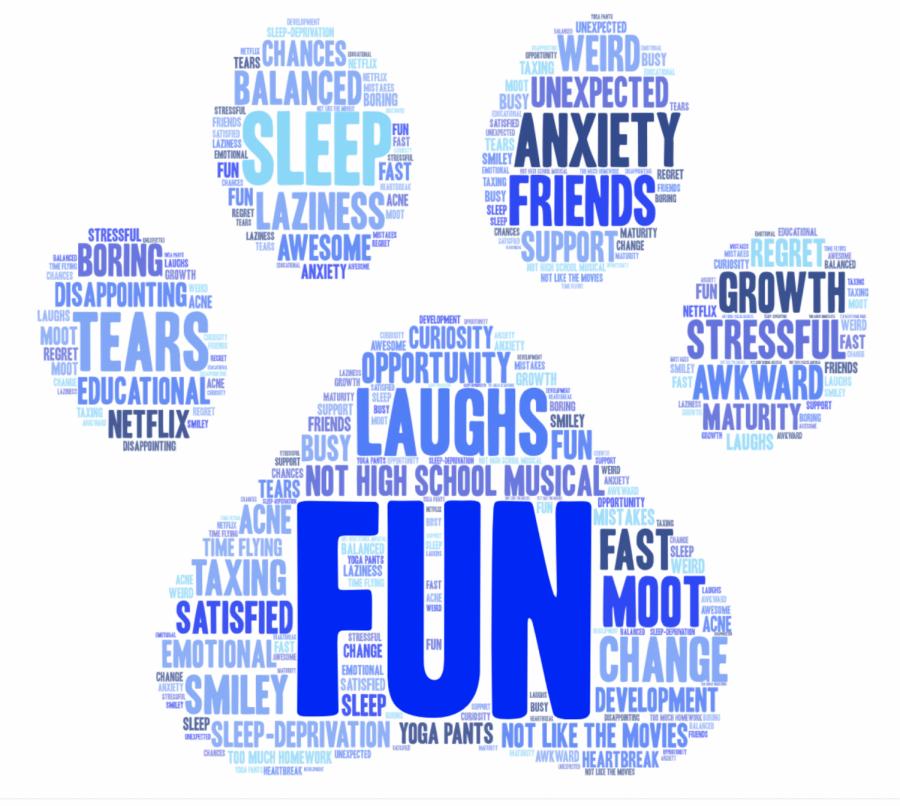Senior Wordle